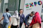 Nido di vespe all'ingresso dell'Expo: vigili del fuoco in azione