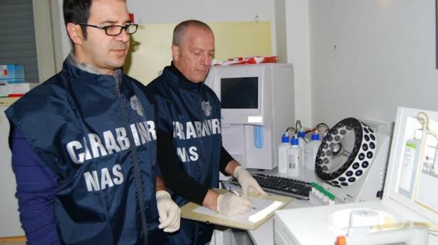 carabinieri, Nas, sacchetti biodegradabili, Palermo, Cronaca