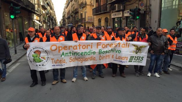 forestali, riforma, sindacati, Sicilia, Economia
