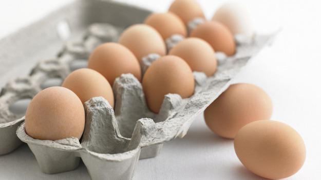 uova contaminate, Sicilia, Cronaca