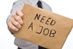 Piano giovani, trovati i soldi per i tirocini: entro l'estate mille candidati al lavoro