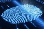 Impronte digitali e donazione organi: ecco la nuova Carta d'identità