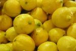 Rubano 3 tonnellate di limoni, un arresto a Noto