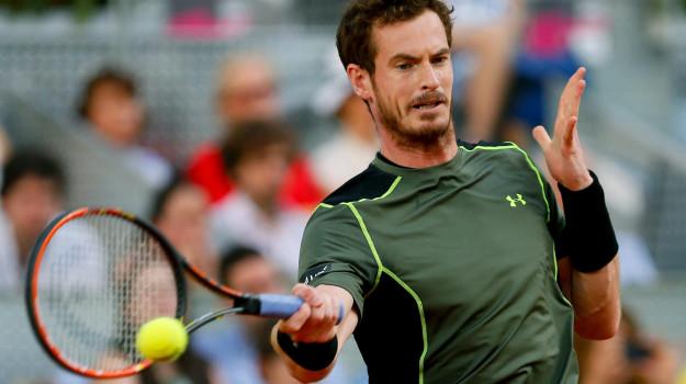 australian open, Tennis, Andy Murray, Sicilia, Sport