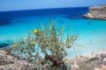 A Lampedusa arrivano 120 tour operator