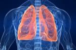 Fegato e colon, l'immunoterapia contro i tumori difficili