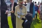 Bimbo in tight stringe la mano alla regina Elisabetta: il video è virale