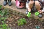 Bimbi imparano prima nelle scuole con spazi verdi