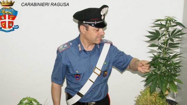 arresto, comiso, Ragusa, Cronaca