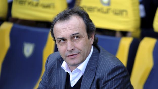 allenatore palermo, Palermo in B, Pasquale Marino, Palermo, Calcio