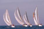 Un mare di vele bianche nel golfo di Gela