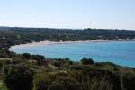 """""""Tutti fuori, c'è uno squalo"""", panico in una spiaggia della Sardegna"""