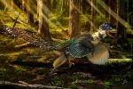 Scoperto il più grande dinosauro con ali d'uccello