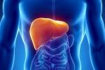 Alta la guardia contro l'epatite C: oltre 1 milione di morti l'anno