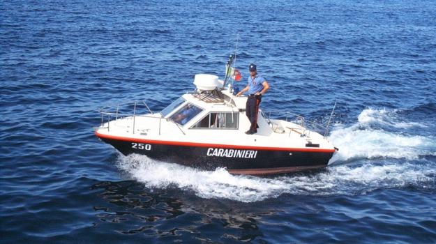 carabinieri, Cinisi, Palermo, pesca, ricci, Palermo, Cronaca