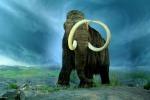 La scomparsa dei mammut? Colpa del clima e non dell'uomo