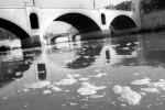 """Arrivano i """"nanospazzini"""": puliscono acque e suoli inquinati"""