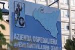 Villa Sofia-Cervello, assunti 15 amministrativi ex Lsu