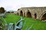 Fra le antiche campate dove scorreva l'Oreto solo siringhe, cartacce e nemmeno un turista