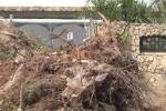 Villagrazia di Carini, le ruspe cercano i corpi dei Maiorana - Video
