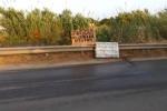 """""""Fogna sull'asfalto"""", la denuncia di Mare Amico ad Agrigento - Video"""