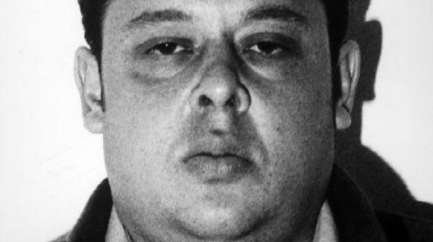 arresto, beni, sequestro, Matteo Messina Denaro, Trapani, Cronaca