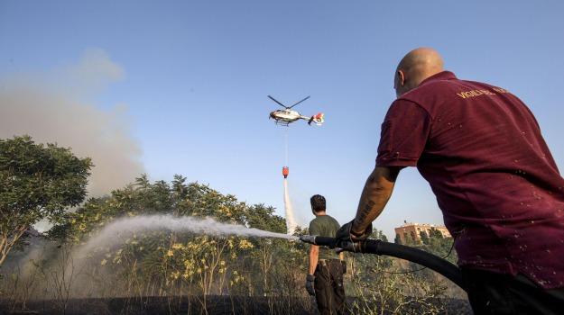 elicotteri anti-incendio sicilia, emergenza incendi sicilia, Sicilia, Politica