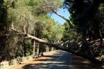 Monte Pellegrino, gli interventi per la messa in sicurezza