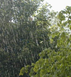Meteo, allerta gialla per arrivo temporali: da domani torna la pioggia in Sicilia