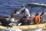 Strage al largo della Libia, migranti superstiti a Palermo