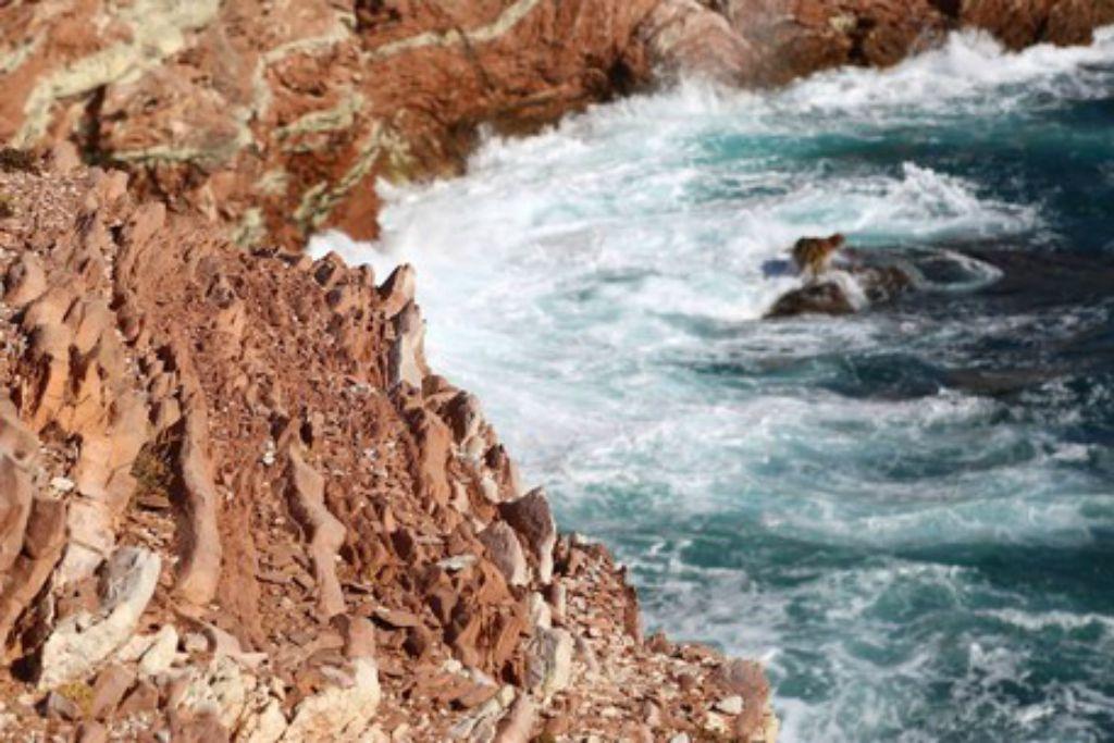datazione di rocce e fossili incontri uomo divorziato lunga distanza