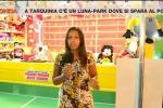 Tarquinia, servizio al luna park: l'inviata di La7 aggredita in diretta - Video