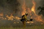 Brucia la California, il governatore dichiara lo stato di emergenza