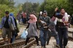 Unchr, oltre 65 milioni di rifugiati nel mondo: segnato record nel 2015
