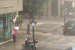 Un violento nubifragio colpisce Palermo, alberi caduti in strada e auto danneggiate - Video