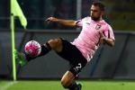 Palermo, è buona la prima: Rigoni e Quaison stendono l'Avellino