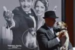 """Addio a Uggie, il cane che ha commosso il pubblico di """"The Artist"""" - Foto"""