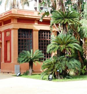 Earth Day anche a Palermo, iniziativa all'Orto Botanico