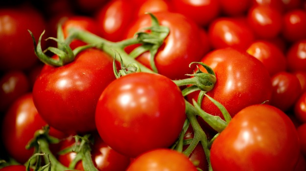 piante, pomodori, virus, Ragusa, Cronaca