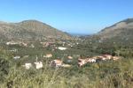 Giallo Maiorana, ruspe in azione vicino Torretta: le immagini - Video