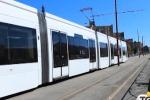 """Dal tram all'arrivo di nuovi bus a Palermo, l'assessore: """"Investimenti dopo 15 anni"""""""