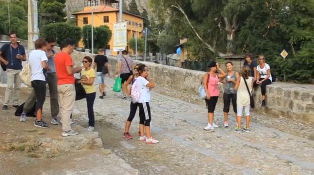 festino palermo, programma acchianata santa rosalia, Palermo, Cronaca