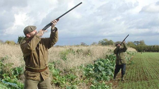 caccia, cacciatori, enna, stagione venatoria, Enna, Cronaca