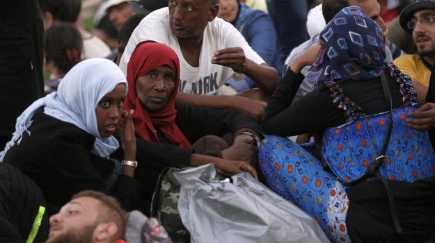 croazia, migranti, Ungheria, Sicilia, Cronaca