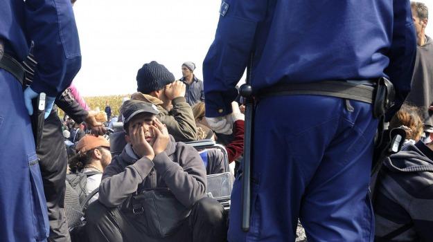 confine ungheria-serbia, migranti, Sicilia, Cronaca