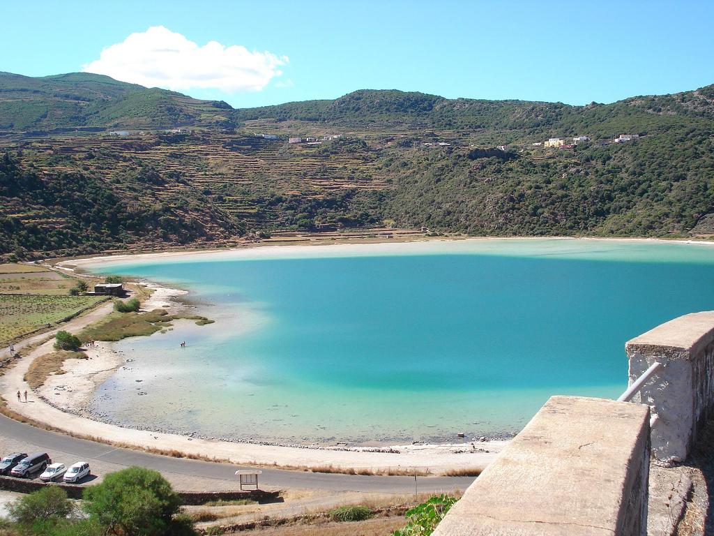 Vivaio Forestale Lazio : Lazio approvata la legge per la coltivazione della canapa