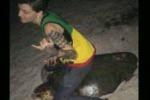 Cavalca una tartaruga e pubblica la foto sui social network: arrestata