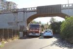 Palermo, cane in pericolo in un dirupo: salvato dai vigili del fuoco - Video