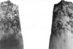 Scoperto un dente di 580 mila anni fa: è il reperto più antico d'Italia