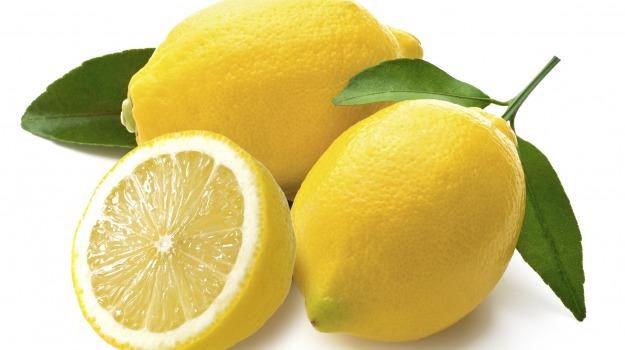 expo, limoni siciliani, Sicilia, Società